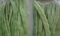 34 Polylactic Acid Controllable Degradation Glass Fiber Composite Materials, Bio-Based and Biodegradable Nets for Green Beans