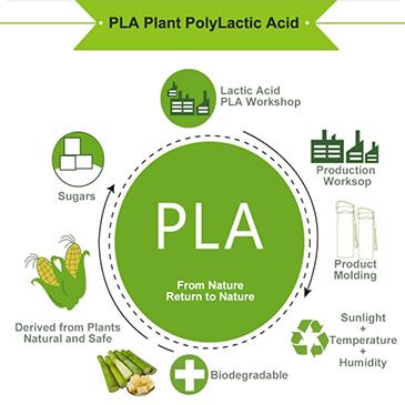 PLA, Plant PolyLactic Acid